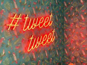 Serendeputy surveille et exploite les articles partagés sur Twitter